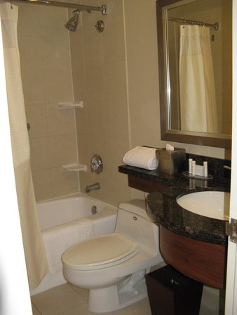Courtyard Miami Coconut Grove: Small but suficient bathroom -Courtyard Coconut Grove