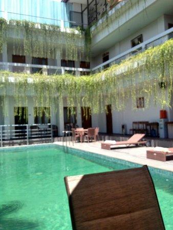 دليما هوتل آند فيلاز: the pool