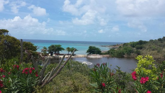 Gumption's Tours BVI: Gorgeous View from Necker Island