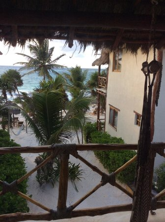 Rosa del Viento: View from Room 8