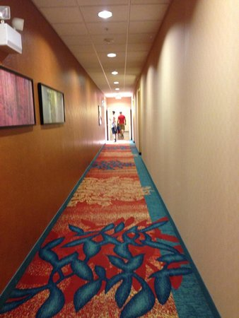 Residence Inn Chattanooga Near Hamilton Place: Hallway from our room. Love the carpet!