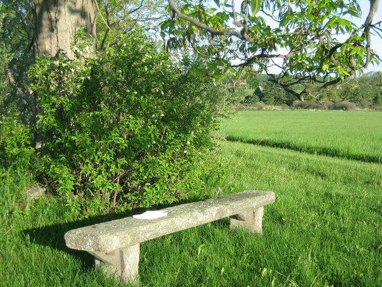 Arvgarden Bed & Breakfast: Relaxing setting