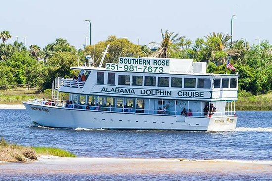 Southern Rose Parasailing And Dolphin Cruises The Traveling Down An Inland Waterway