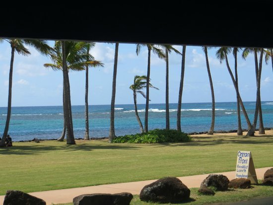 Kauai Beach House : From the room