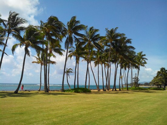 Kauai Beach House : View on the bike path