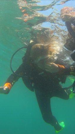 Blue Explorers: my granddaughter scuba diving
