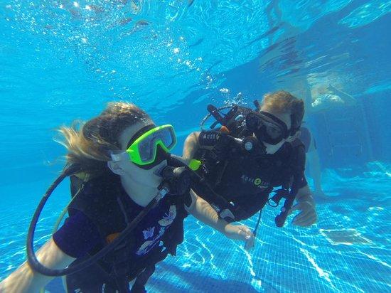 Blue Explorers: free trial in pool