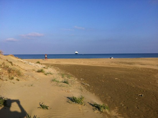 Lady's Mile Beach: Sunny day