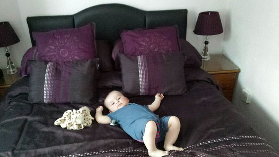 The Toulson Court: My boy making himself at home