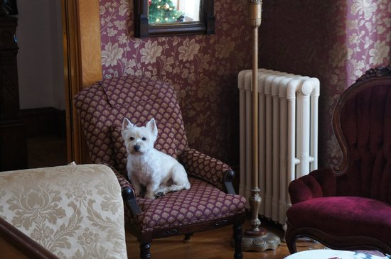 Maplecroft Bed And Breakfast: Barney