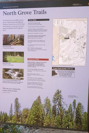 Kings Canyon NP North Grove Loop Trail Map Picture of North Grove