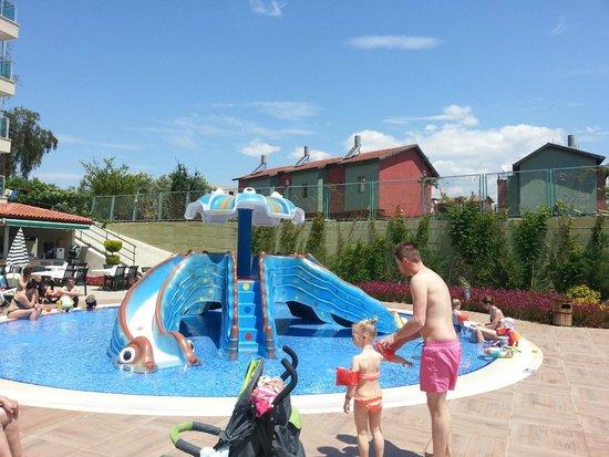 Gardenia Beach Hotel: active pool