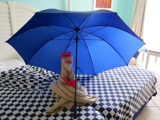 Blau Marina Varadero Resort: gift we found in our room