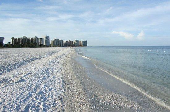 Marco Beach Ocean Resort : exceptional beach