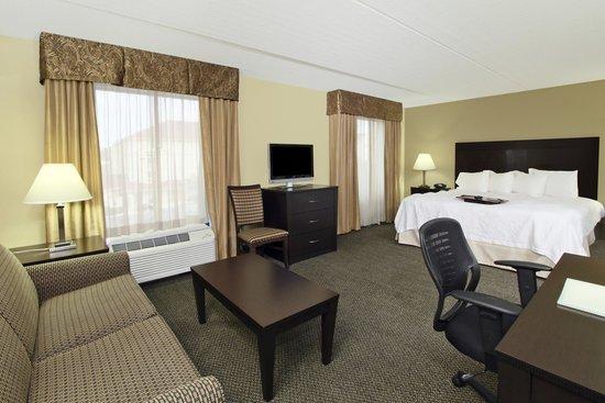 Hampton Inn & Suites Alexandria: Suite