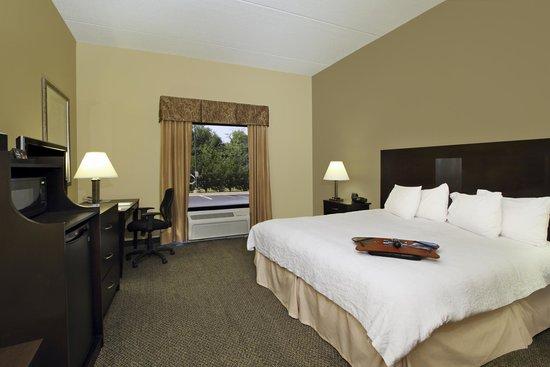 Hampton Inn & Suites Alexandria: King Room