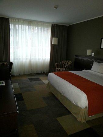 Atton Hotel El Bosque: camera