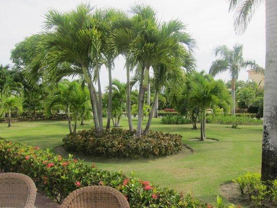 Grand Bahia Principe Bavaro : garden