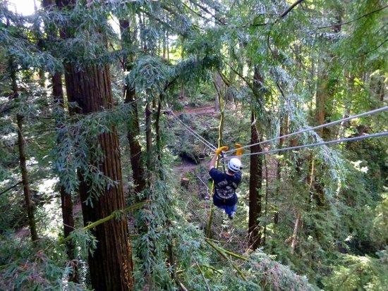 Mount Hermon Adventures : Zipping along