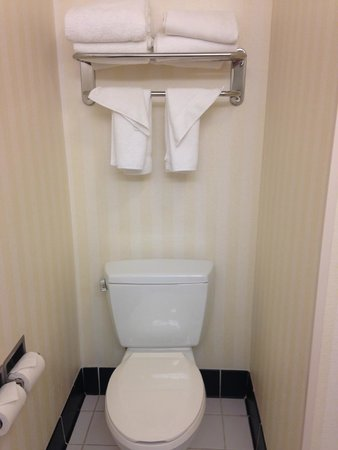 Fairfield Inn & Suites Birmingham Pelham/I-65 : Bethroom