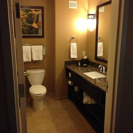 Embassy Suites by Hilton Orlando Lake Buena Vista South: Bathroom
