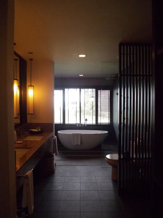 Meritus Pelangi Beach Resort & Spa, Langkawi: bathroom and view
