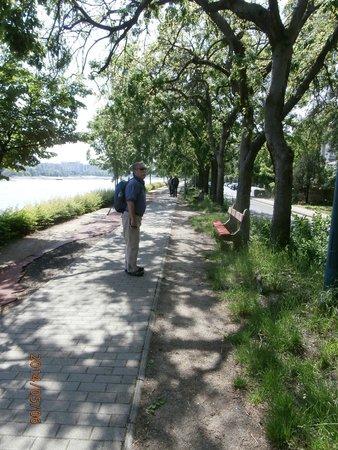 Margaret Island (Margitsziget) : running trail