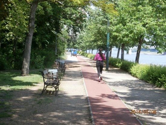 Margaret Island (Margitsziget) : running trail w cart in background