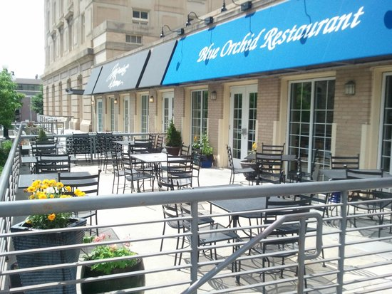 Blue Orchid: Patio Seating