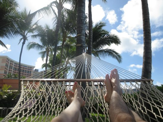 Sheraton Waikiki: LOVED the Hammocks!