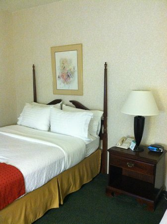 Holiday Inn - Airport Conference Center: Room