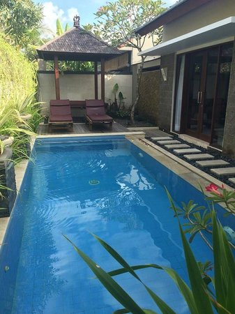 Lumbini Luxury Villas and Spa : Private Pool