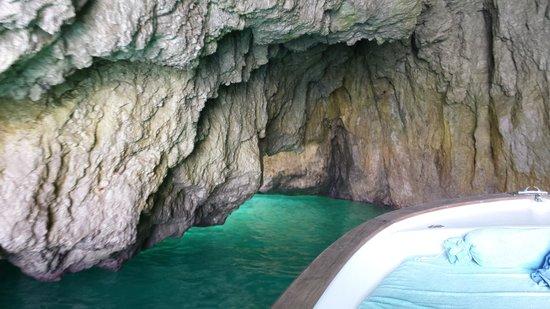 Capri Whales di Wendy: Grotto
