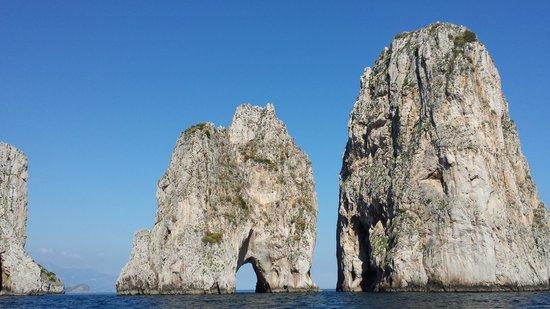 Capri Whales di Wendy: AmazingViews