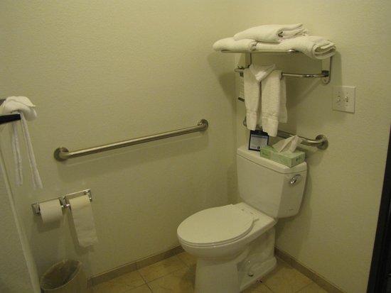 BEST WESTERN Douglas Inn & Suites : bathroom
