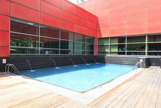 Royal Plaza on Scotts: Small Pool