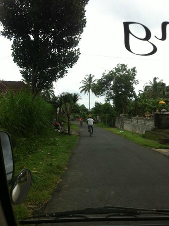 Ubud Bali Bicycle Tours - Private Tours: Cycling1