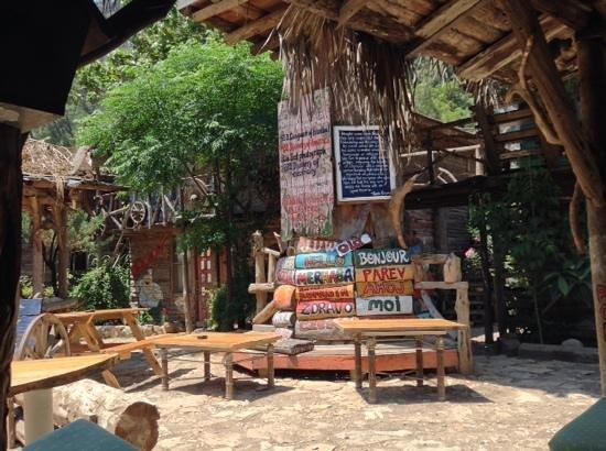 Kadir's Tree House: görüntü