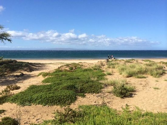 Kealia Pond National Wildlife Refuge: Beach access