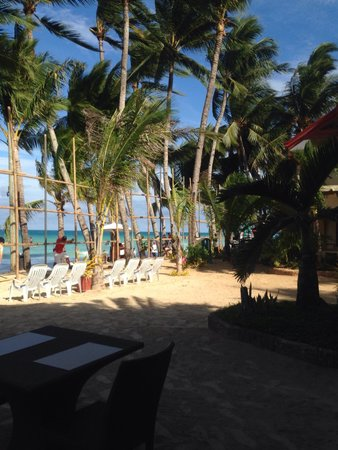 Willy's Beach Hotel : View from the dining area