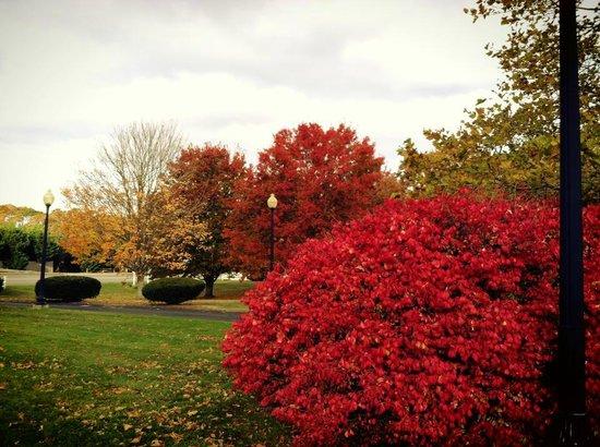 Fall time at Ocean Park Inn