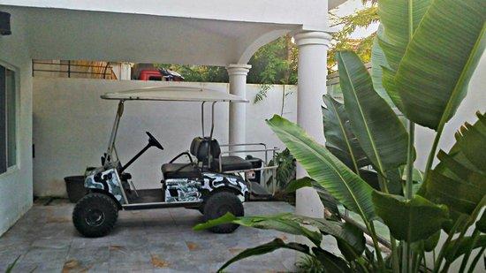Golf Carts Indios: Camo Indios Cart