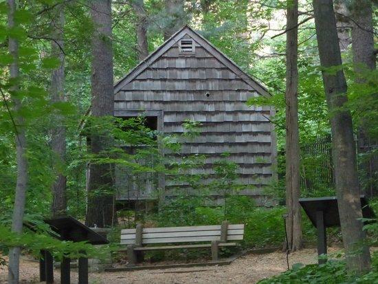 Eloise Butler Wildflower Garden and Bird Sanctuary: Information cottage named 'shelter'