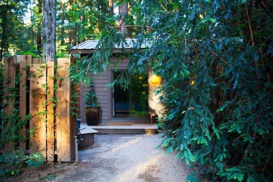Glen Oaks Big Sur : Exterior Little Sur Cabin (East #5)