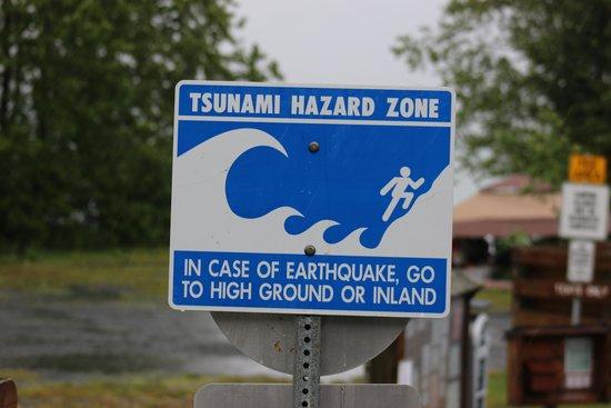 Seward Boat Harbor: Funny sign