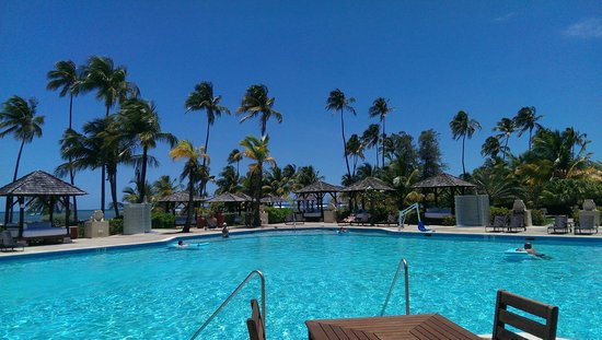 Melia Coco Beach : Red Level Pool was Great!