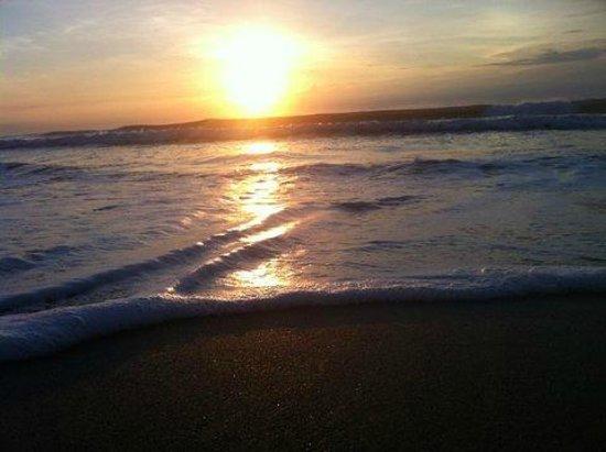 Beach Island Resort : #3