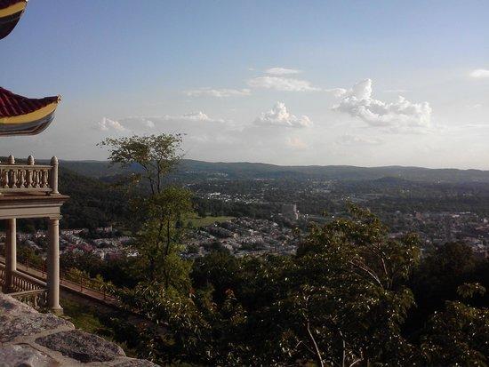 partial pagoda view