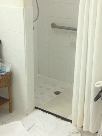 Ramada Fort Lauderdale Airport/Cruise Port : Shower