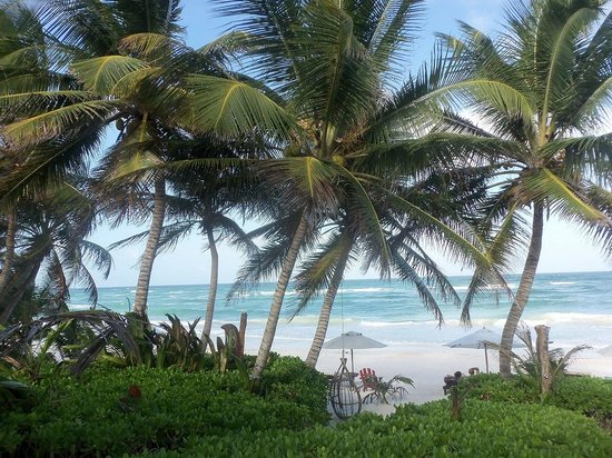 Cabanas La Luna: Beach 2